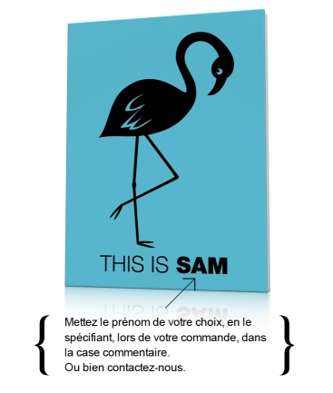 Tableau flamant rose enfant This is Sam