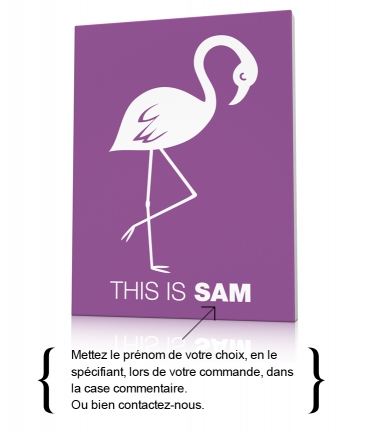 Tableau déco enfant flamant rose This is Sam