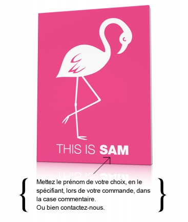 Tableau deco flamant rose This is Sam