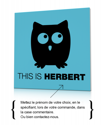 Tableau de hibou enfant This is Herbert