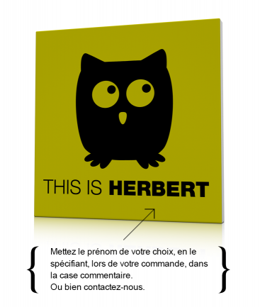 Tableau hibou déco This is Herbert