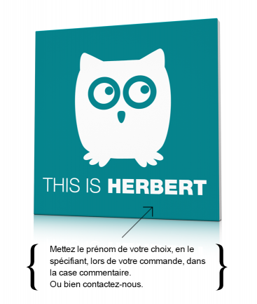 Tableau hibou enfant This is Herbert