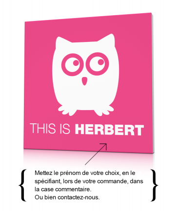 Toile déco hibou rose This is Herbert