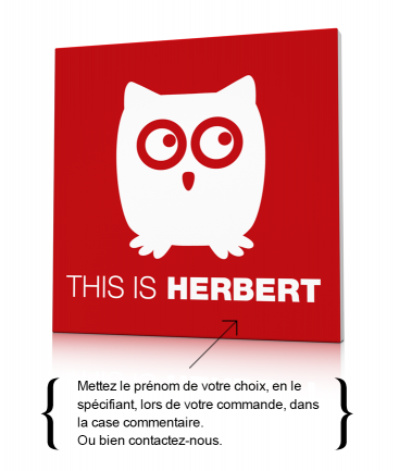 Toile déco hibou rouge This is Herbert
