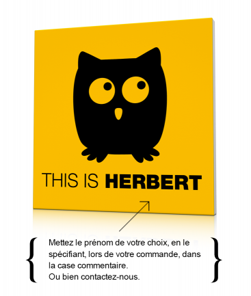Toile déco hibou jaune This is Herbert