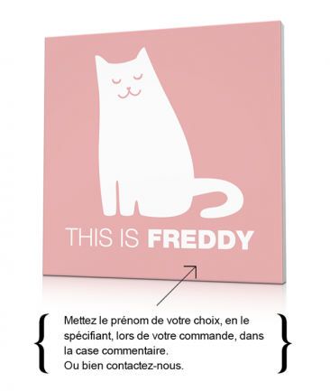 Tableau chat couleur pastel déco enfant This is Freddy