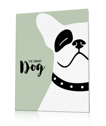 Tableau bouledogue pop art Smarty